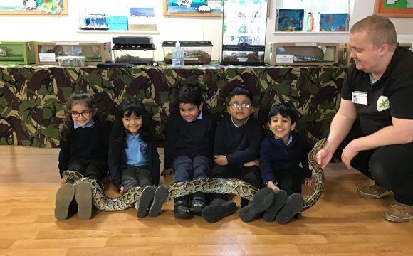 Reception In School Reptile Visit